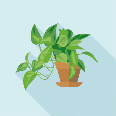Digital vector green decorative office plant with brown pot, flat style