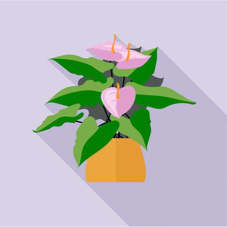 Digital vector green decorative orchid flower blooming with brown pot, flat style Illustration