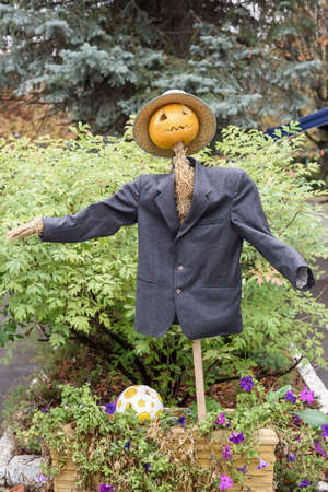 head for: Scarecrow in suit and pumpkin head for halloween.