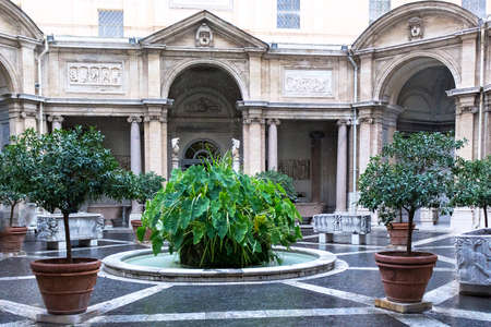 obelisk stone: Green plants, rain, and fountain in a building from vatican, rome, italy