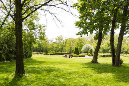 View on danube park with green grass, trees and bench, austria