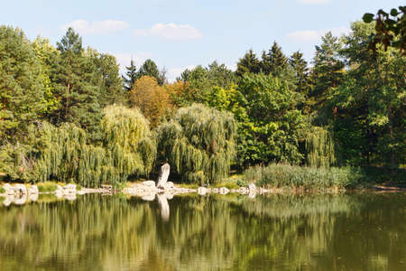 Willow trees at the lake with reflection, central park in Edinet city, north of republic of Moldova