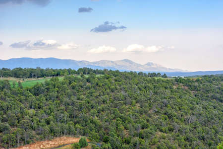 Beatiful daylight view to mountains and green forest in Ruidoso, New Mexico, United states of America