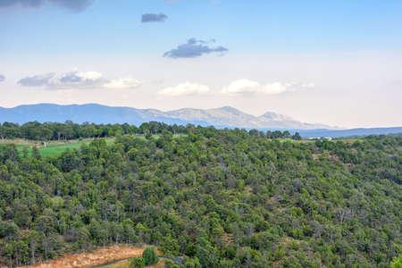 Mooie daglichtmening aan bergen en groen bos in Ruidoso, New Mexico, de Verenigde Staten van Amerika Stockfoto