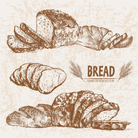 Digital vector detailed line art baked bread and dried wheat hand drawn retro illustration collection set. Thin artistic pencil outline. Vintage ink flat, engraved simple doodle sketches. Isolated