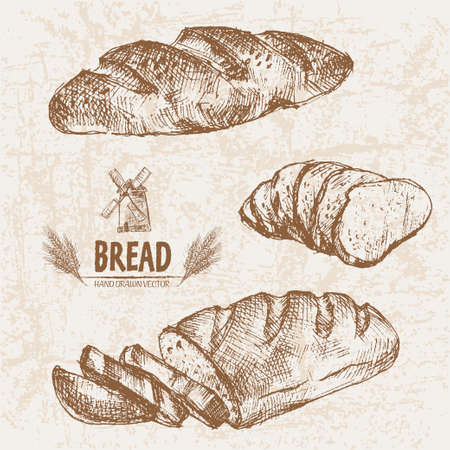 french toast: Digital vector detailed line art baked bread and dried wheat hand drawn retro illustration collection set. Thin artistic pencil outline. Vintage ink flat, engraved mill doodle sketches. Isolated Stock Photo