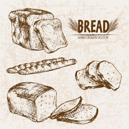 Digital vector detailed line art baked bread and dried wheat hand drawn retro illustration collection set. Thin artistic pencil outline. Vintage ink flat, engraved mill doodle sketches. Isolated 스톡 콘텐츠