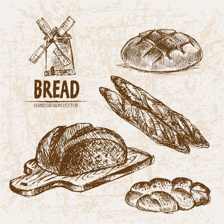 Digitale vector gedetailleerde lijn kunst gebakken brood en gedroogde tarwe hand getrokken retro illustratie collectie set. Dun artistiek potloodoverzicht. Vintage inkt plat, gegraveerde molen doodle schetsen. Geïsoleerd