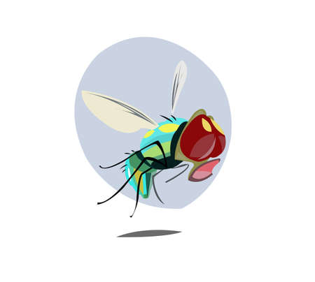Digital vector funny comic cartoon colored sad fly insect close up, open mouth,  hand drawn illustration, abstract realistic flat style