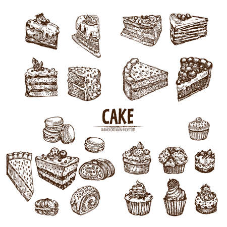 Digital detailed line art sliced cake and cupcakes hand drawn retro illustration collection set. Thin artistic pencil outline. Vintage ink flat, engraved design doodle sketches