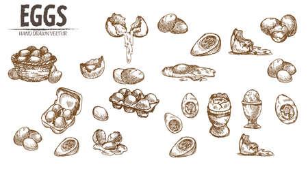 De digitale vector gedetailleerde eieren van de lijnkunst in houten de inzamelingsreeks van de mandhand getrokken retro illustratie. Dun artistiek potloodoverzicht. Vintage inkt plat, gegraveerde molen doodle schetsen. Geïsoleerd Stock Illustratie