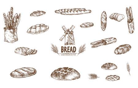 디지털 벡터 자세한 라인 아트 구운 빵 및 말린 된 밀 손으로 그려진 된 레트로 그림 컬렉션 집합. 얇은 예술적 연필 개요입니다. 빈티지 잉크 평면, 새