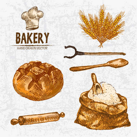 Digital color vector detailed line art golden loaf of round bread, wheat, oven fork, wooden paddle and rolling pin, flour sack with scoop hand drawn set. Vintage ink flat, bakery sketches. Isolated