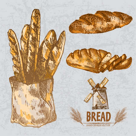 Digital color vector line art golden loaves of long and braided bread, slices, baguettes in organic bag, wheat hand drawn set. Thin outline. Vintage ink flat, engraved mill doodle sketches. Isolated illustration.