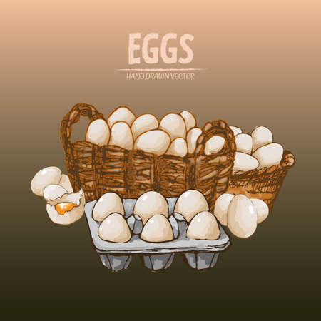 Digital vector detailed line art eggs in wooden basket hand drawn retro illustration collection set. Thin artistic pencil outline. Vintage ink flat, engraved mill doodle sketches. Isolated Vectores