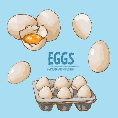 Illustration of a set of split and packaged eggs