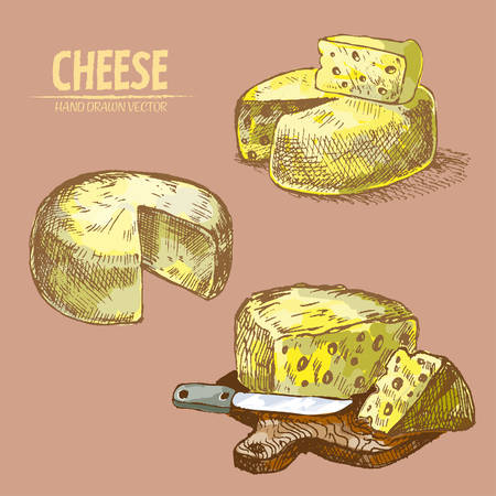 Digital vector detailed line art sliced cheese with holes hand drawn retro illustration collection set. Thin artistic pencil outline. Vintage ink flat, engraved mill doodle sketches. Isolated