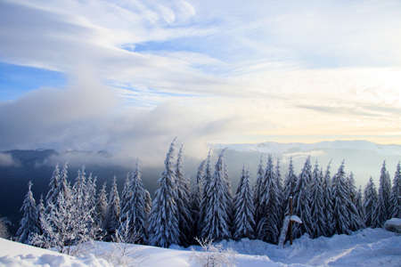 winter landscape in the mountains of Sinaia in a sunny day, Romania Stock Photo