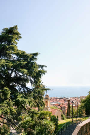 View of Sanremo visible through lush greenery, Italy