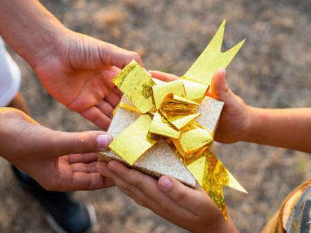 A boy and a kid are holding a gift box with golden tape, setting sun. Holiday concept