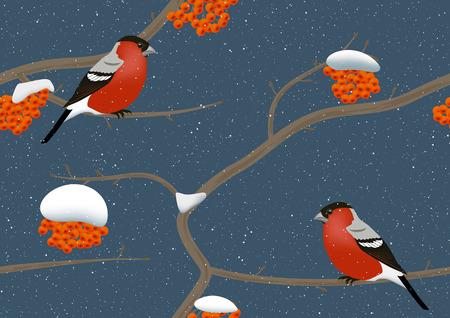 Bullfinches on rowan tree in winter. Seamless vector.