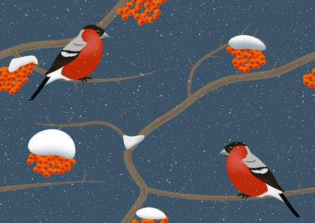 birds in tree: Bullfinches on rowan tree in winter. Seamless vector.