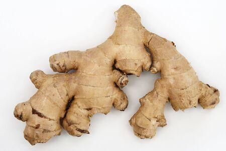 Rhizome of ginger (Zingiber officinale)