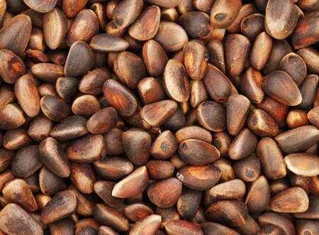 Pine nuts (Siberian Cedar Pine, Pinus sibirica)