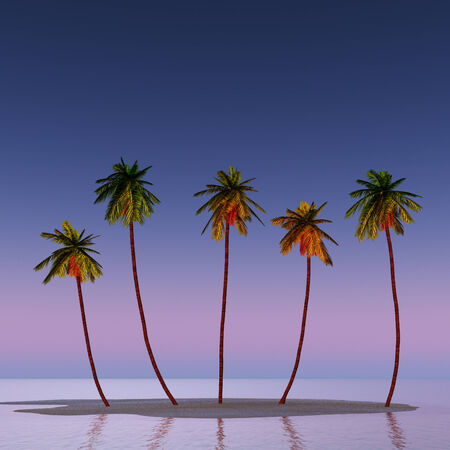 A small island with five coconut pulms  illustration