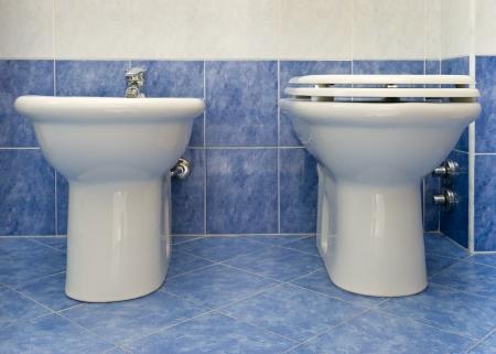 w c: bathroom closeup - the water-closet and bidet