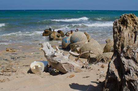 generic plastic waste accumulates on the beach photo