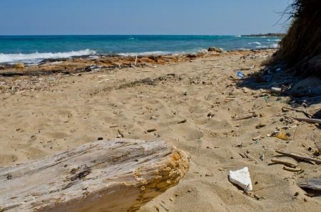 generic plastic waste accumulates on the beach photo