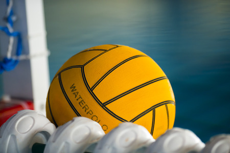 water polo: Una pelota de polo acuático flotando en el agua en una piscina