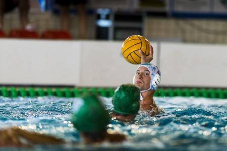 waterpolo: jugadores de polo acu�tico en la piscina