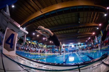 piscina olimpica: MILAN - 23 de diciembre: S. Negri (Italia) estilo libre de actuar en Nataci�n Reuni�n Brema Copa el 23 de diciembre de 2014 en Mil�n, Italia.