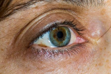 eye green: Cierre plano de un ojo verde mujer de mediana edad y el envejecimiento de la piel Foto de archivo