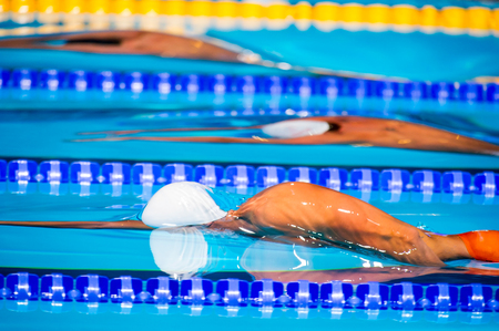 start swimming race in swimming pool Stock Photo