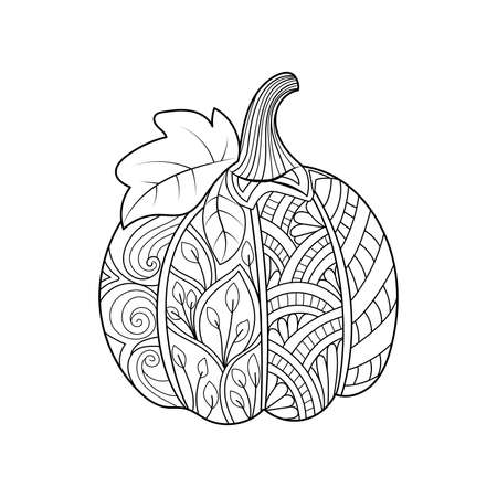 Hand drawn pumpkin. for Thanksgiving day, Halloween.Hand drawn sketch for adult coloring page