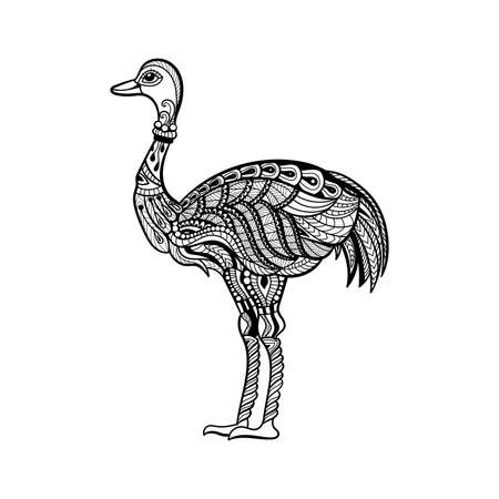 Vector of ostrich in zentangle style.Hand drawn  Black and White illustration