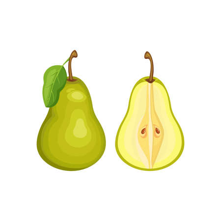 green pear whole and half  isolated on white background. Vector illustration. Healthy food design. ingredients for cooking.