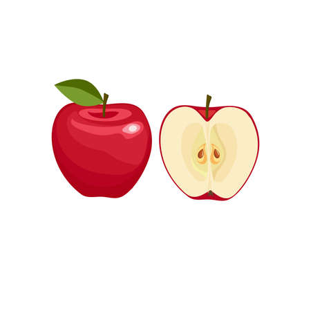 Red apple whole and half  isolated on white background. Vector illustration. Healthy food design. ingredients for cooking.