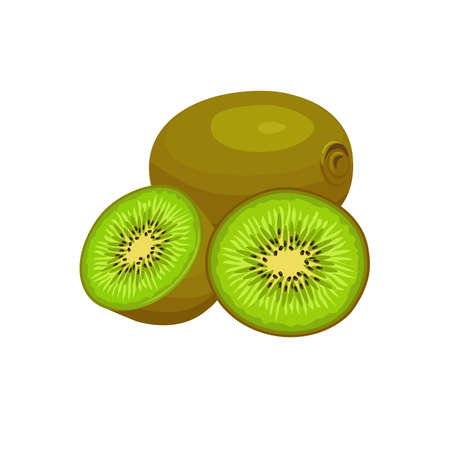 kiwi fruit whole and half  isolated on white background. Vector illustration. Healthy food design. ingredients for cooking.