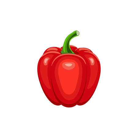 Red pepper isolated on white background. Vector illustration. ingredients for cooking.