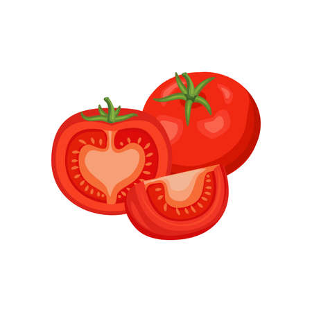 Tomato whole and slices isolated on white background. Vector illustration. Healthy food design. ingredients for cooking.