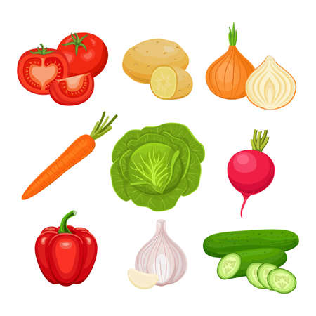 Set of fresh vegetables  isolated on white background. Tomato, potato, onion, carrot, cabbage, radish, pepper, garlic, cucumber. Vector colorful icons.