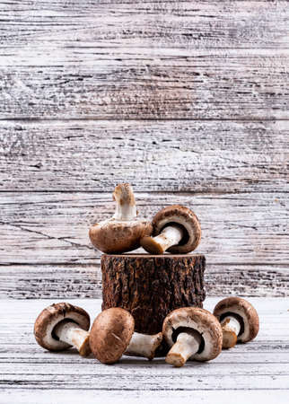 Some of brown mushrooms on a wood stub on light wooden background, side view. free space for your text