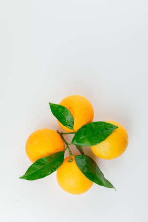 Cool oranges with green leaves on white background, top view.