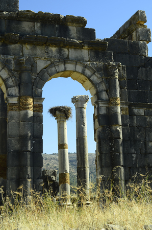 volubilis: arch and colomn in ancient roman site of Volubilis in Morocco Stock Photo