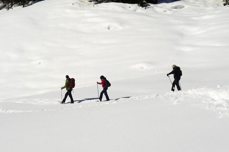 snowshoes: Austria, people walking with snowshoes through wintery landscape Stock Photo