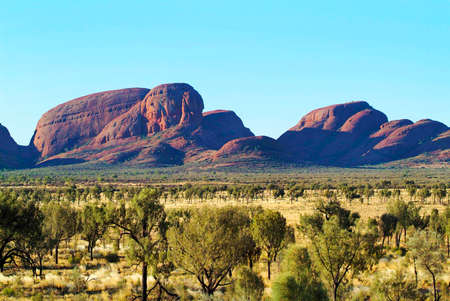 tjuta: Australia - rock formation Kata Tjuta - aka the Olgas - a mystical palce for Aboriginal and spinifex grass and desert steppe with oaks